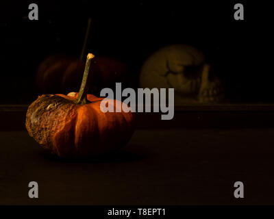 Abstract still life displaying rotting pumpkin reflected on the glass window viewed from the side, and a skull on the other side, with plenty of copys - Stock Image