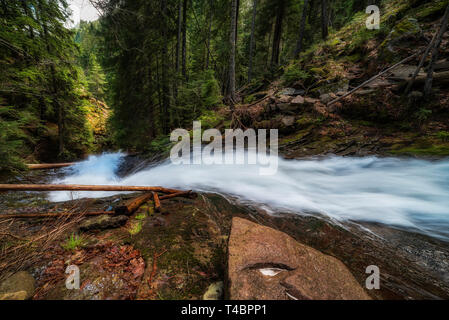 Spring in mountain, forest and a river in front. beautiful scenery - Stock Image