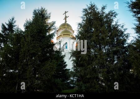 church,Church of the trees,Church behind trees,blue sky - Stock Image