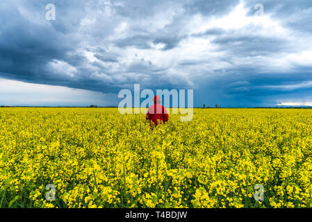 Spring agricultural landscape with man in red dress in big rape fields , farmland panorama with dramatic rainy clouds - Stock Image
