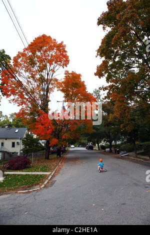 Little boy riding a tricycle down a suburban street in the fall - Stock Image