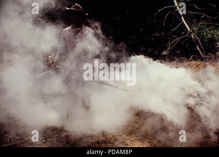 Sawdust burning at sawmill in Rio Branco city, Acre State - Amazon deforestation, Brazil. - Stock Image