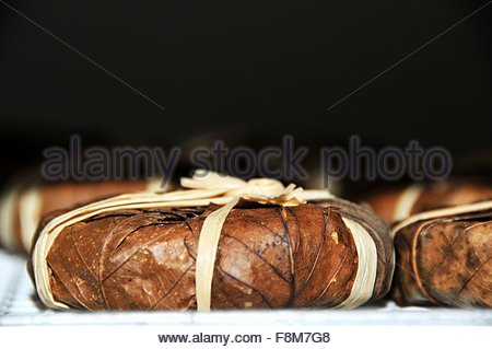 Banon de Provence (cheese wrapped in chestnut leaves) - Stock Image