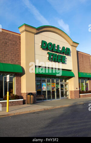 Dollar Tree Store Front - Stock Image