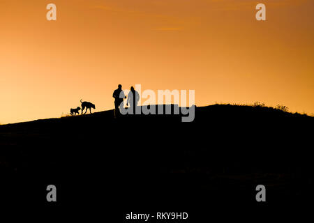 People walking their dogs silhouetted against an intense sunset over East Pentire in Newquay in Cornwall. - Stock Image