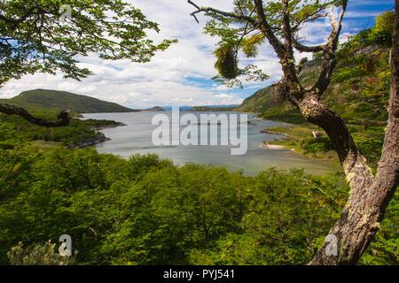 Tierra del Fuego National Park, Ushuaia, Argentina. - Stock Image