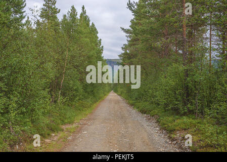 Endless gravel road in Norwegian forest, in Alta, Finnmark, Norway. - Stock Image
