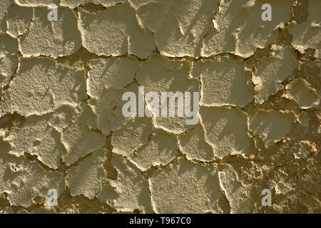 pebbledash wall of an old house peel off, dirty and old cracked damaged plaster wall background lit by the midday sun - Stock Image