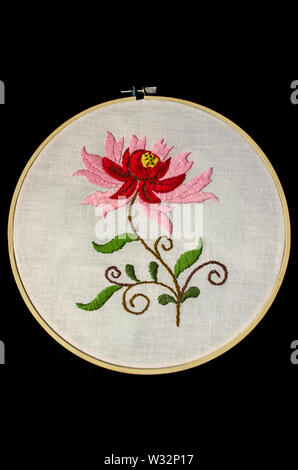Embroidered stylized flower with red and pink petals on twisted branches and leaves on white cotton fabric with wooden embroidery frame on black backg - Stock Image