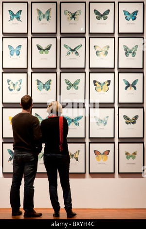 Two young people looking at butterfly drawings - Stock Image