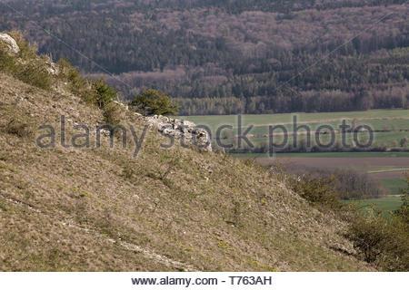 On the German mountain Hesselberg - Stock Image
