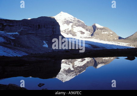 Mount Robson reflection - Stock Image