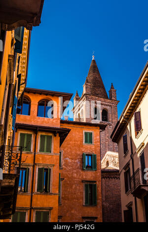 Church tower and buildings against a dark blue sky in Verona, Italy - Stock Image