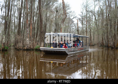 Louisiana swamp, view of tourists aboard a flat bottomed boat during a trip along the Pearl River in the Louisiana bayou, USA - Stock Image