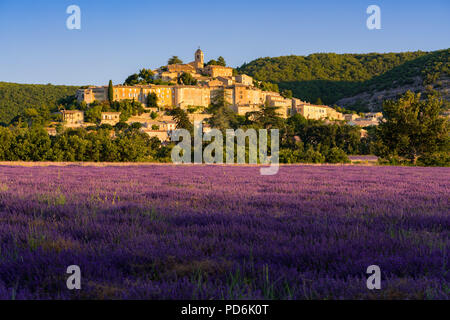 The village of Banon in Provence with lavender fields at sunrise. Summer in the Alpes-de-Hautes-Provence. Alps, France - Stock Image