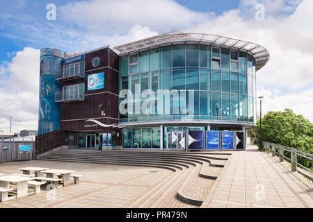 2 June 2018: Plymouth, Devon, UK - The National Marine Aquarium. - Stock Image