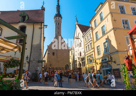 Tallinn Old Town, view in summer of Tallinn Town Hall Tower sited at the end of Vanaturu kael in the city center Old Town quarter, Estonia - Stock Image