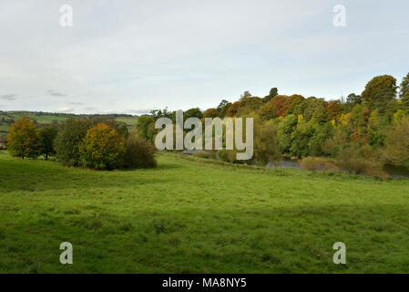The Warren at Hay on Wye - Stock Image