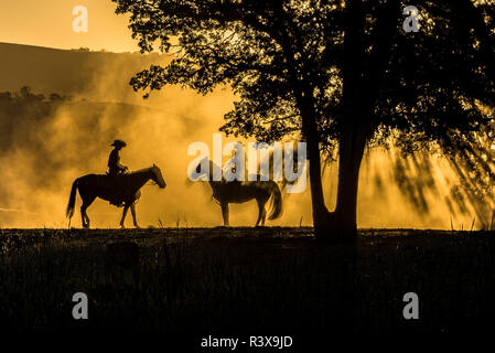 USA, California, Parkfield, V6 Ranch silhouette of two riders on horseback. Early dusty morning. (MR) - Stock Image