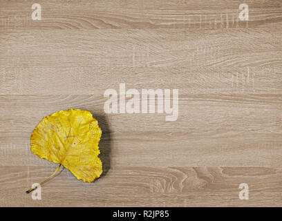Yellow dry leaf on brown wooden texture background - Stock Image