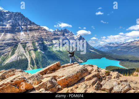 A hiker stands in awe on top of Bow Summit overlooking Peyto Lake in Banff National Park on the Icefields Parkway. The glacier-fed lake is famous for  - Stock Image