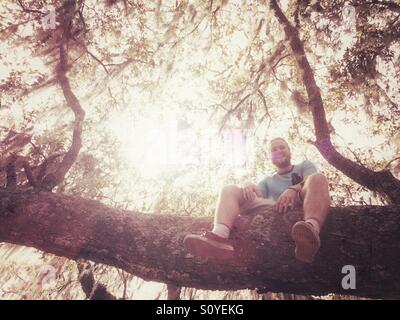 Happy young man on a tree branch - Stock Image