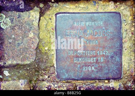 stolpersteine gunter demnig art stumbling stones memorial murdered jews nazi regime - Stock Image