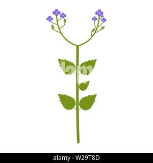 Wildflowers flower flat icon, plant vector illustration isolated on white background - Stock Image