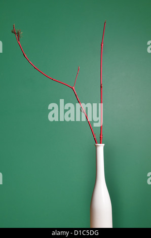 Still Life with Red Branches and White Vase, home decoration - Stock Image