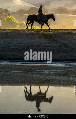 USA, California, Parkfield, V6 Ranch silhouette of a cowboy on horseback, reflected in a pond in the early morning golden light (MR) - Stock Image
