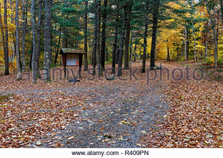 Autumn in Camden Hills State Park, Maine, USA - Stock Image