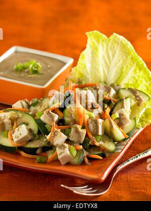 spicy Asian tofu salad - Stock Image