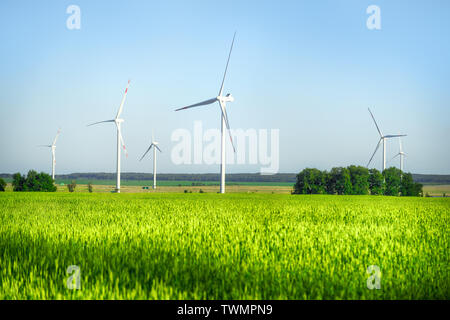 Wind power plant in the green field. Bright summer landscape - Stock Image