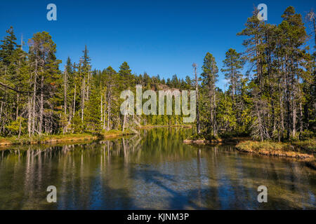 Little Nugedzi Lake, temperate rainforest, Quadra Island, British Columbia, Canada - Stock Image