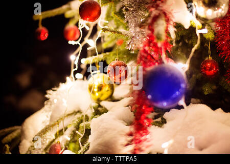Close-up of decorated Christmas tree - Stock Image