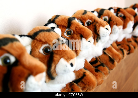 Eight stuffed tiger toys lined up in a row.Focus is on the third tiger in the pack. - Stock Image