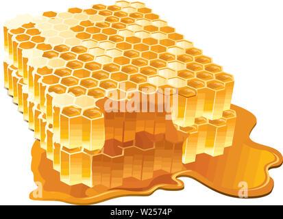 beehive honeycomb bee food honey natural breakfast illustration - Stock Image