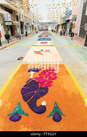 Giant floral carpets made from colored sawdust and decorated with flowers during the 8th Night Celebration marking the end of the Feast of St Michael in the central Mexican town of Uriangato, Guanajuato. Every year the town decorates 5km of road with religious icons in preparation for the statue of the patron saint to be paraded through the town. Uriangato became an international sensation after wowing Brussels with their floral carpet displayed at the Brussels Grand-Place during the Belgium Floral Carpet festival. - Stock Image