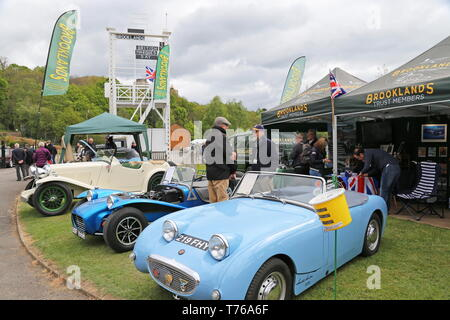 Austin-Healey 'Frogeye' Sprite Mk1 (1959), British Marques Day, 28 April 2019, Brooklands Museum, Weybridge, Surrey, England, Great Britain, UK Europe - Stock Image