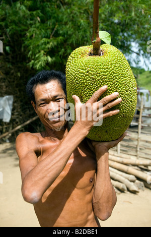 A Filipino holds a freshly-picked jackfruit in the countryside near Mansalay, Oriental Mindoro, Philippines. - Stock Image