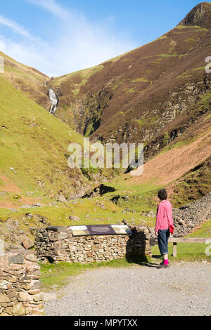 Woman looking at the Grey Mare's Tail or Roaring Linn waterfall, near Moffat, Dumfries & Galloway, Scotland, UK - Stock Image