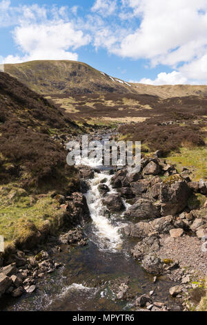 The Tail Burn between Loch Skeen and the Grey Mare's Tail waterfall, near Moffat, Dumfries & Galloway, Scotland, UK - Stock Image