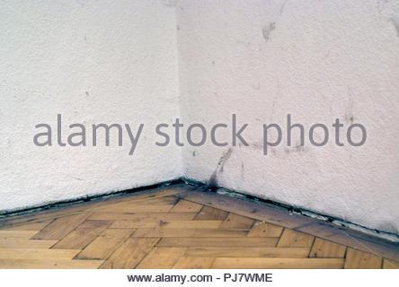 room corner - Stock Image