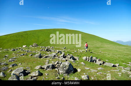 A hiker and their dog walking up a green hill with blue sky in the English Countryside. - Stock Image
