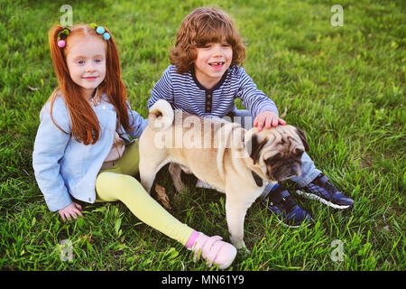 boy and girl playing in park on grass with dog of pug breed. - Stock Image