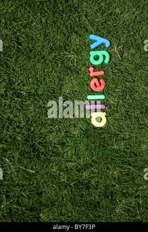 The word 'allergy' spelled out in colourful plastic letters, on green grass, taken from a low angle - Stock Image