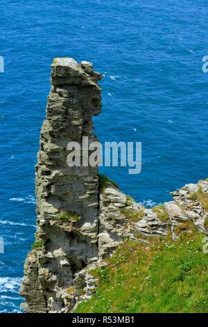 Tintagel castle Island Peninsula,Cornwall,England,UK - Stock Image