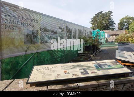 Forestry seedling propagation unit, National arboretum, Westonbirt arboretum, Gloucestershire, England, UK - Stock Image