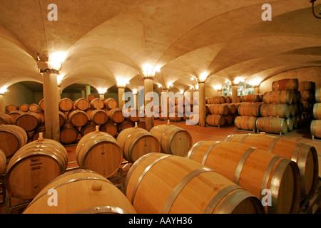 south africa wine region Suider Paarl Avondale wine cellar  - Stock Image