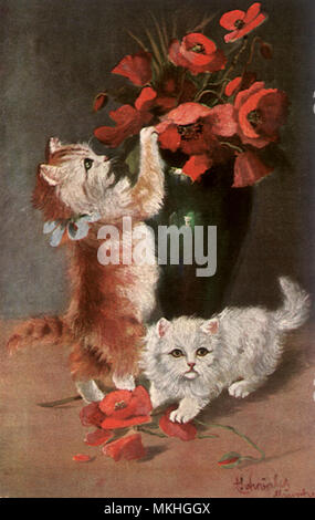 Kittens and Poppies - Stock Image